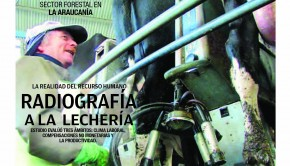 Campo Sureño 16-03-201501 TAPA