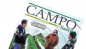 PORTADA Campo Sureño 13-06-2015
