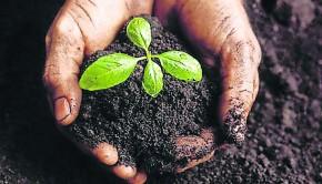 agroecologia (1)
