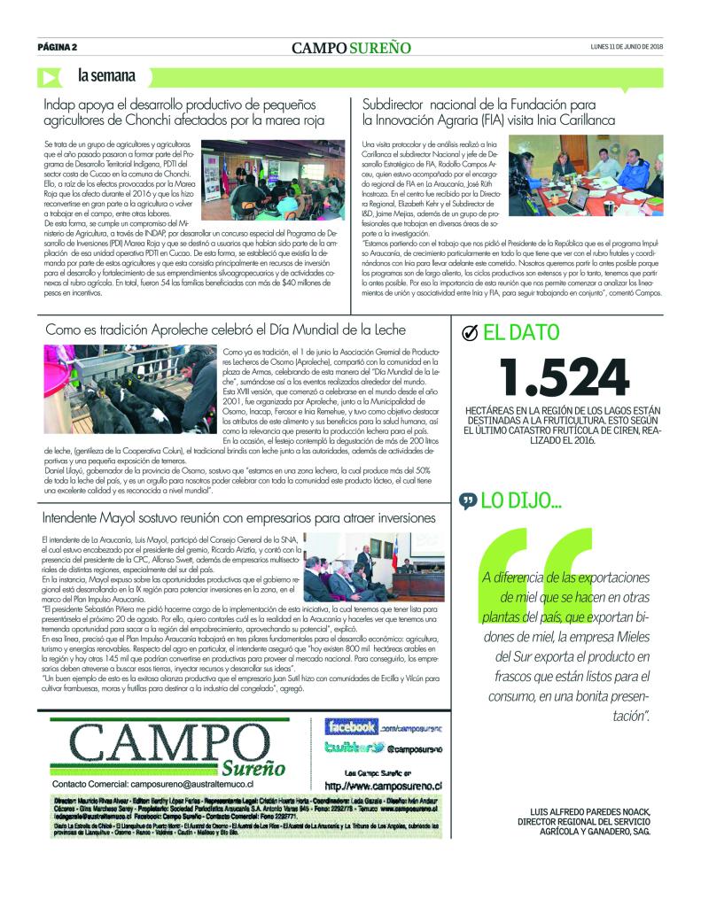 Campo Sureño 11-06-2018 12 pagi
