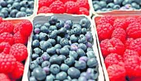 Imagen berries-1493905