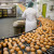 eggs production line