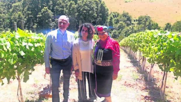Imagen Visita expertos italianos a cooperati(24261771)