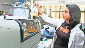 Levadura y Cerveza Elaborada en UCT Patagonian Yeast