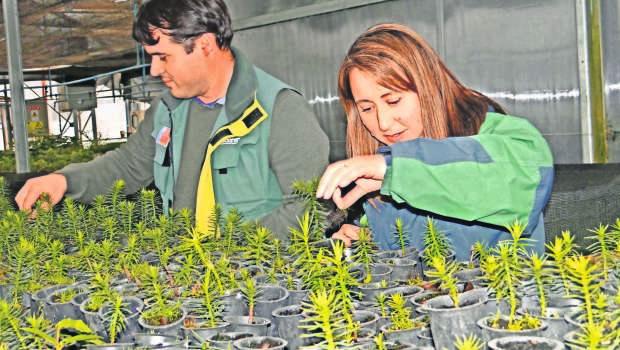 Imagen Imagen Víctor Albarrán y Wanda Contre(25092621)