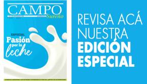 Campo Sureño 29-06-2020